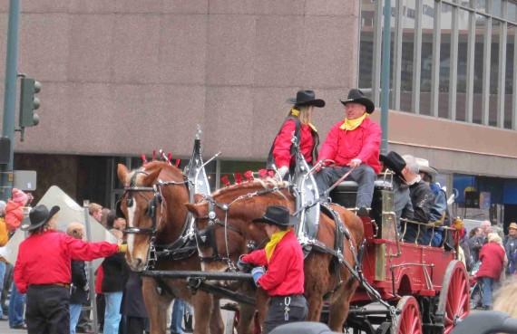 Stock show parade 030