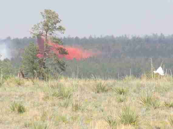 Day 3 Black Forest Fire 016