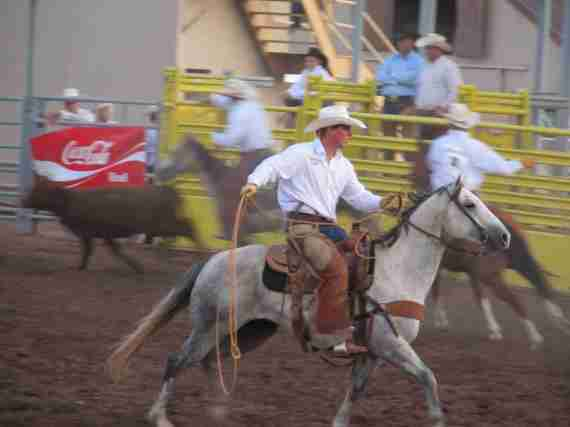Ranch Rodeo 065